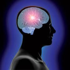 membuat otak berfikir lebih cepat